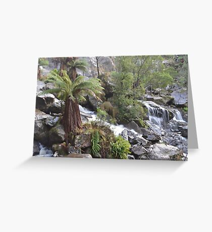 St Columba Falls Greeting Card