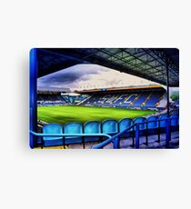 View from the kop Canvas Print