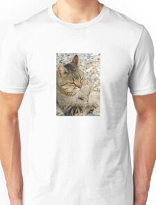 Relaxed Tabby Cat Against Stones and Pebbles T-Shirt