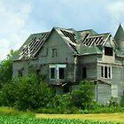 Haunted Prairie by Ogre
