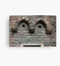 Friendly Face, Bolzano/Bozen, Italy Canvas Print