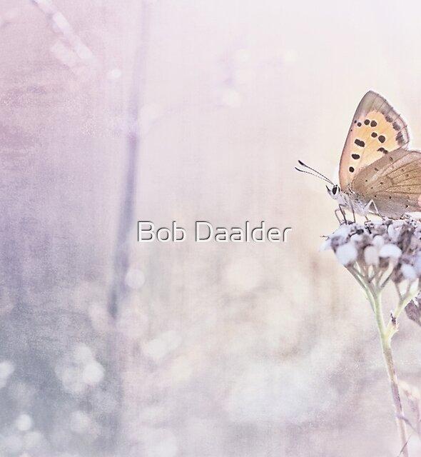 Dream a little dream you little dreamer... by Bob Daalder