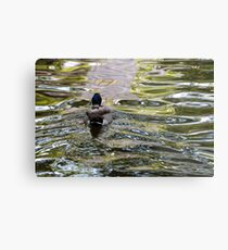 Meandering through the ripples, Bolzano/Bozen, Italy Metal Print
