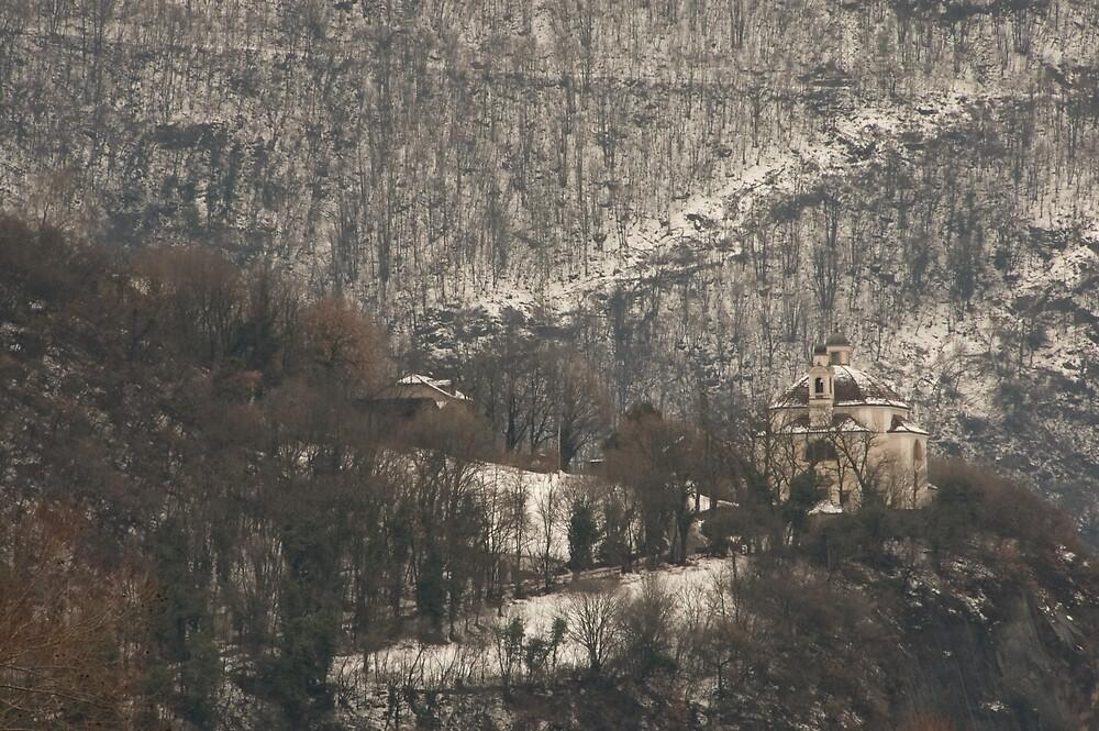 Snow scene, Bolzano/Bozen, Italy  by L Lee McIntyre