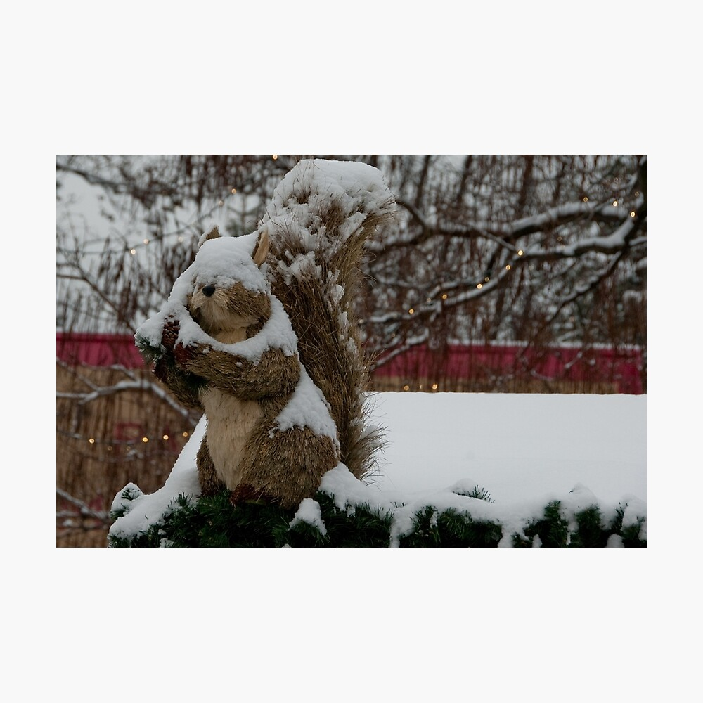 Snow covered animal figure, Christmas Market, Bolzano/Bozen, Italy Photographic Print