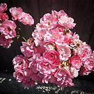 Pink flowers by Asrais