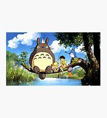 Totoro Photographic Print