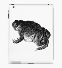 Frodo Toado  iPad Case/Skin
