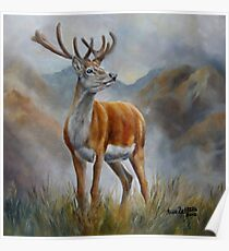 Prince Of The Glen (red stag) Poster
