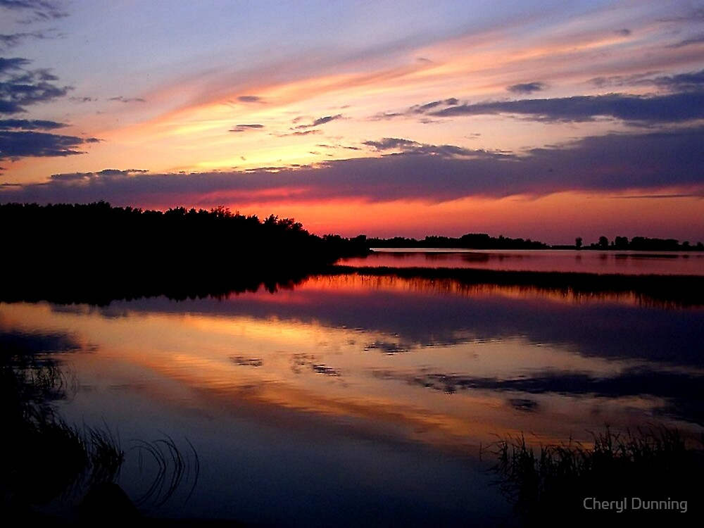 marsh sunset by Cheryl Dunning