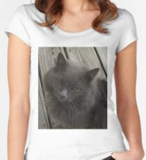 HOMELESS CAT Women's Fitted Scoop T-Shirt