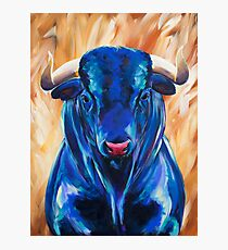 Vincent the Bull Photographic Print