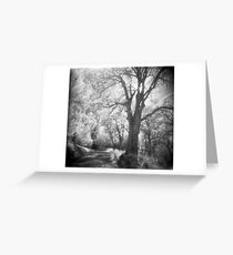 The return to the path Greeting Card