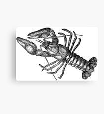 Crayfish Lookalike  Canvas Print