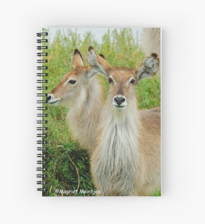 THE YOUNG ONES - THE WATERBUCK - Kobus ellipsiprymnus Spiral Notebook