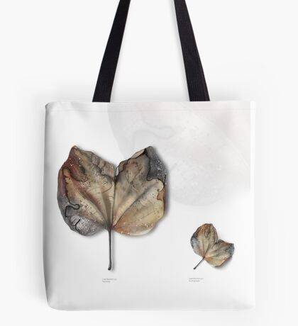 Leaf Exhibit I Tote Bag
