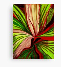 Cordyline Canvas Print
