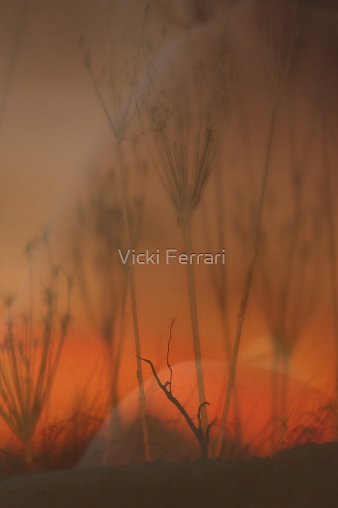 Spirit of the Land © Vicki Ferrari by Vicki Ferrari