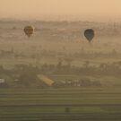 Flying high  by areyarey