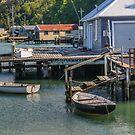 Otago Harbour Boatsheds by Werner Padarin