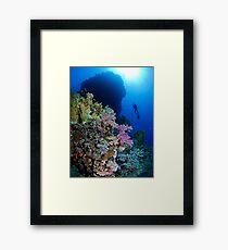 Underwaterworld - Habili Etnin Arug  Framed Print