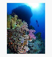 Underwaterworld - Habili Etnin Arug  Photographic Print