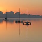 Trimarans, sunrise by Frances Henke