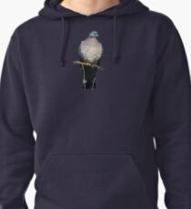 Pigeon Perch Pullover Hoodie