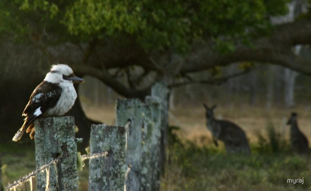 Three Little Australians....down on the farm by myraj