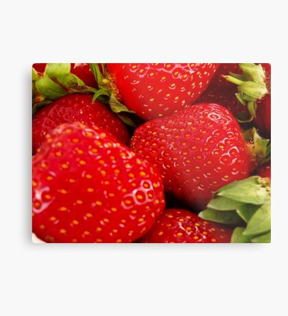 Strawberries! Bolzano/Bozen, Italy Metal Print