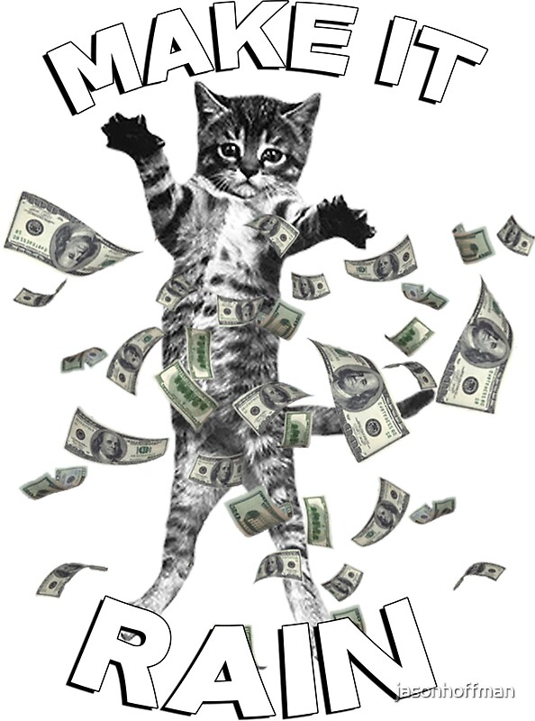 kitten make it rain money dollar bills by jasonhoffman