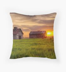 A May Sunrise at the Barn and Crib Throw Pillow