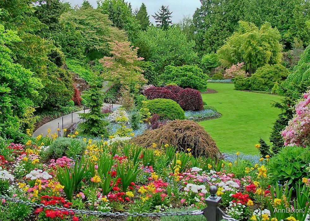 Queen Elizabeth Park by AnnDixon