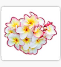Tropical Blossoms Sticker