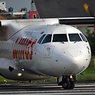 Wings Air airplane by bayu harsa