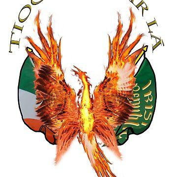 Tiocfaidh ár lá    Our day will come by declancarr