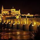 Puente Romano de Cordoba, Andalucia, Spain by TonyCrehan
