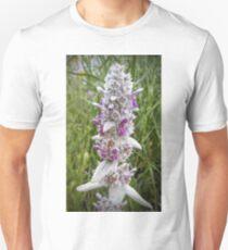 Lamb's Ear Blossom T-Shirt