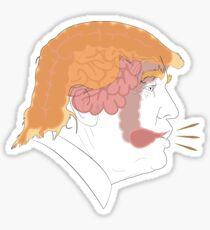 Colon Combover Sticker