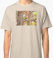 Fall Colors With Yellow Rumped Warbler Classic T-Shirt