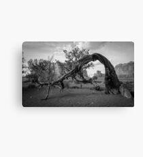 Monument Valley Tree Canvas Print
