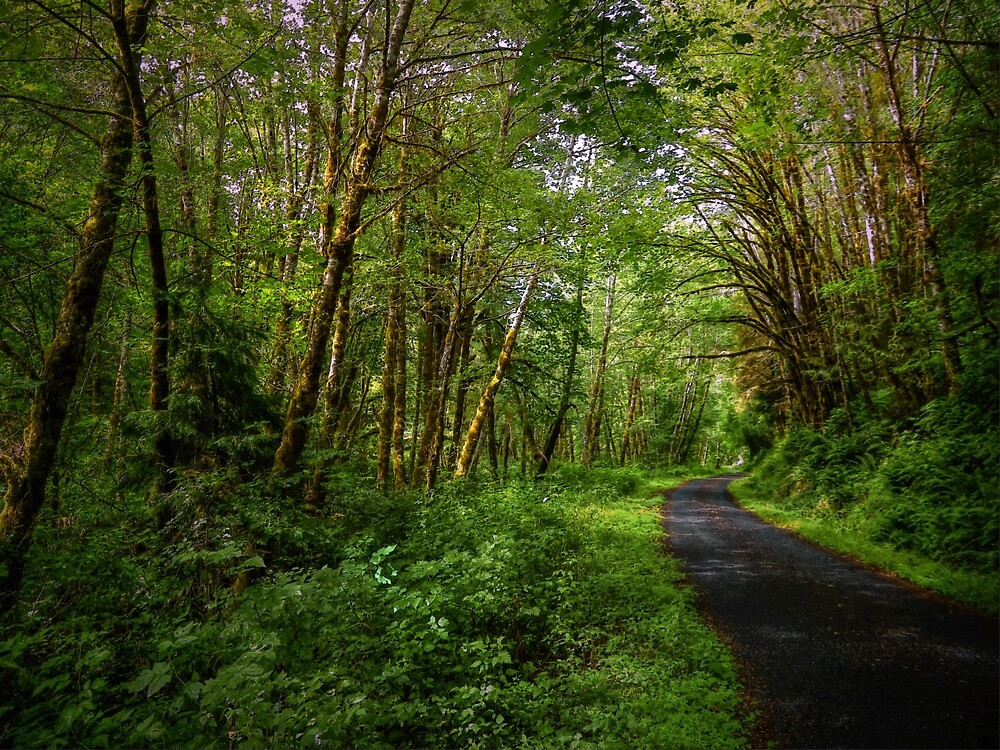 On The Road Again by Charles & Patricia   Harkins ~ Picture Oregon
