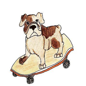 Skater Bulldog by HaileyJoanna