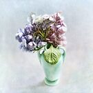 Endless Summer Hydrangea Still Life #2 by LouiseK