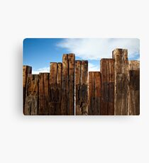View of the Fence Canvas Print