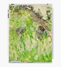 Lime Seaweed iPad Case/Skin
