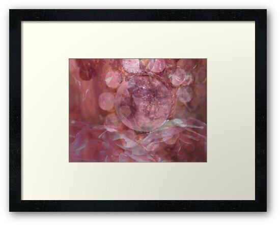 Pink Gem - JUSTART © by JUSTART