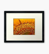 Floral Florets Framed Print