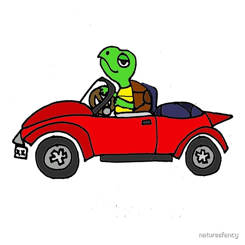 Cool Funky Funny Turtle Driving Red Convertible Car Art Prints By - Cool car art