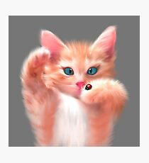 Cute Cat and ladybird Photographic Print